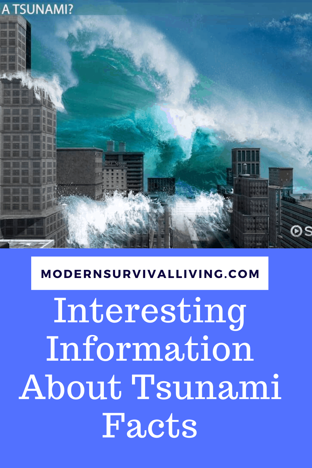Interesting Information About Tsunami Facts