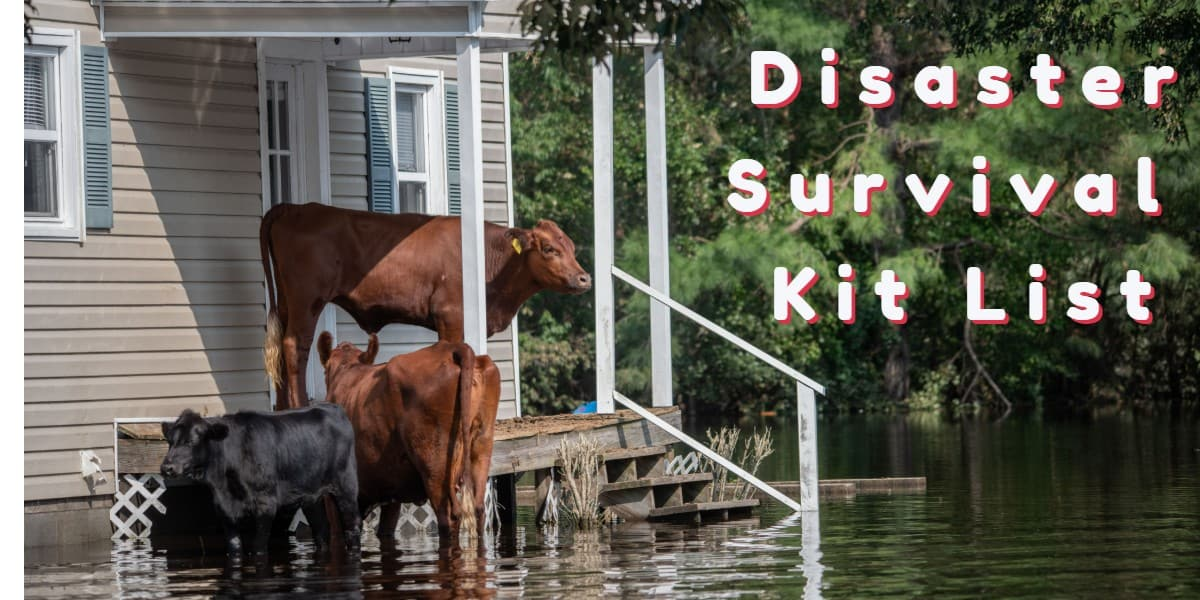 Making Your Own Disaster Survival Kit List
