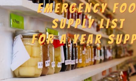 emergency food supply list year supply
