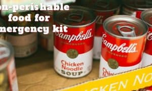 non perishable food for emergency kit