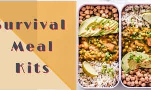 survival meal kits review