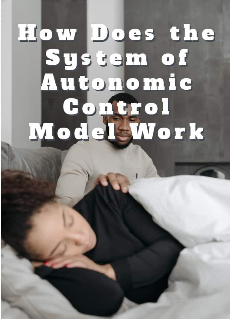 How Does the System of Autonomic Control Model Work