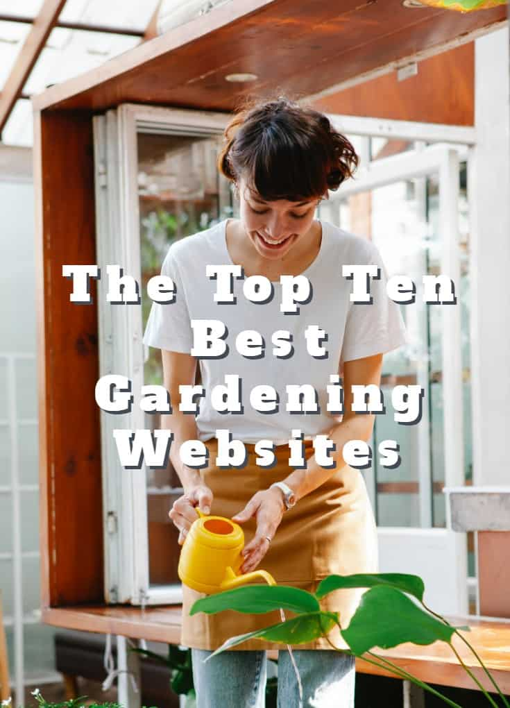 The Top Ten Best Gardening Websites