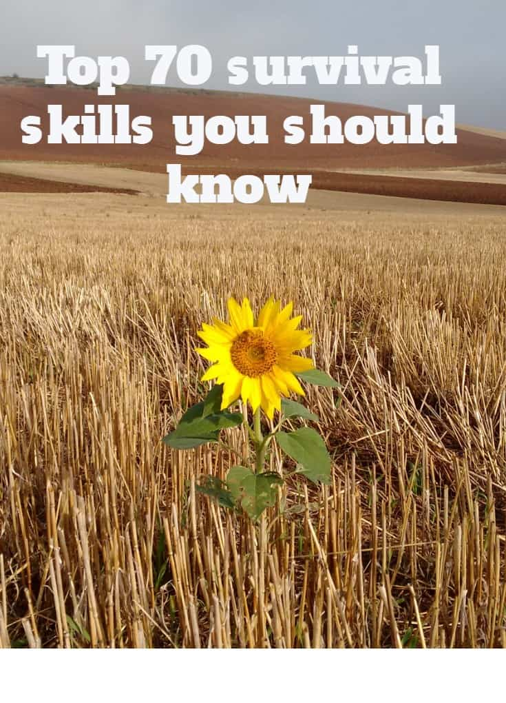 Top 70 survival skills you should know